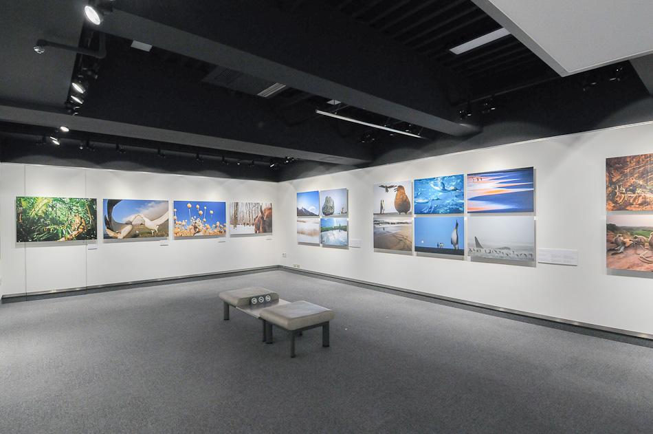 """Living with nature"", Konica-Minolta gallery (Tokyo)"