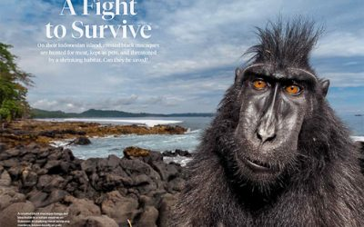 New story on the National Geographic!