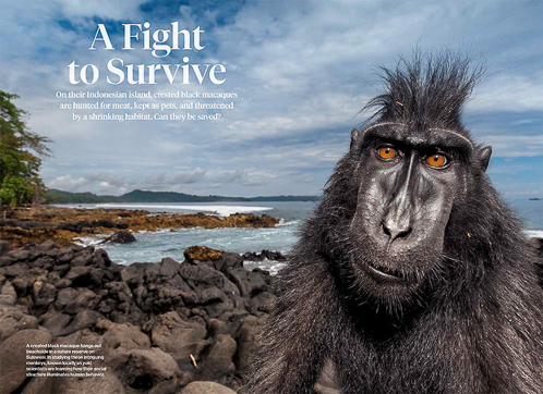 Nuova storia sul National Geographic Magazine!