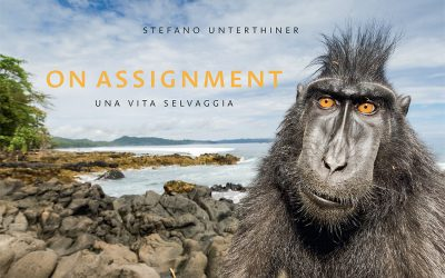 Il nuovo libro: On Assignment